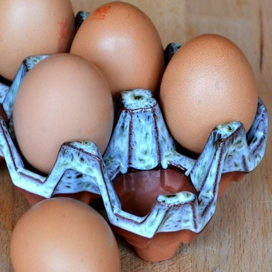Picture of Egg Tray (6 Egg) Turquoise