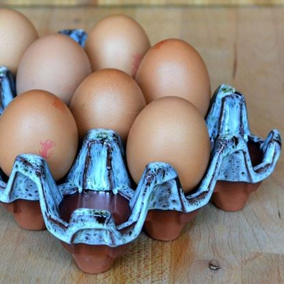Picture of Egg Tray (12 Egg) Turquoise