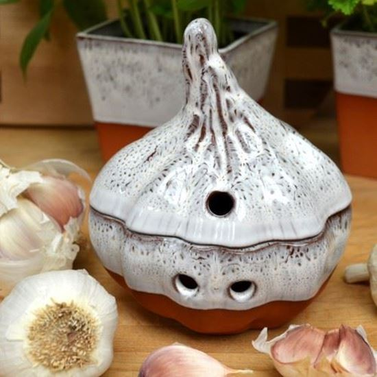 Picture of Garlic Keeper - Oyster Glaze