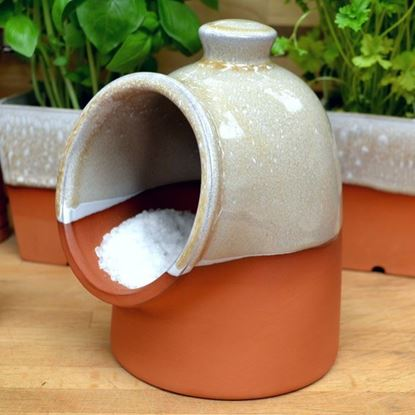 Picture of Salt Pig - Mushroom Glaze