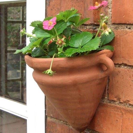 Amphora Wall Pot Weston Mill Pottery Uk
