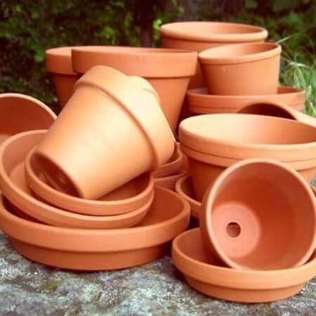 Picture for category Terracotta Plant Pots