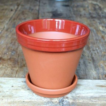 Picture of Terracotta Flower Pot & Saucer - 17cm - Red Glazed