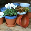 Picture of Terracotta Flower Pot & Saucer - 15cm - Blue Glazed