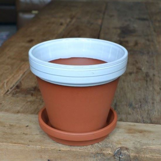 Terracotta Flower Pot Saucer 15cm White Glazed Weston Mill