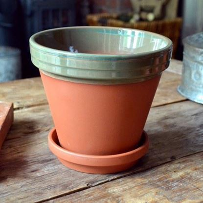 Picture of Terracotta Flower Pot & Saucer - 17cm - Green Glazed