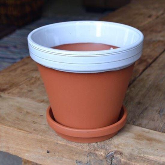 Picture of Terracotta Flower Pot & Saucer - 17cm - White Glazed