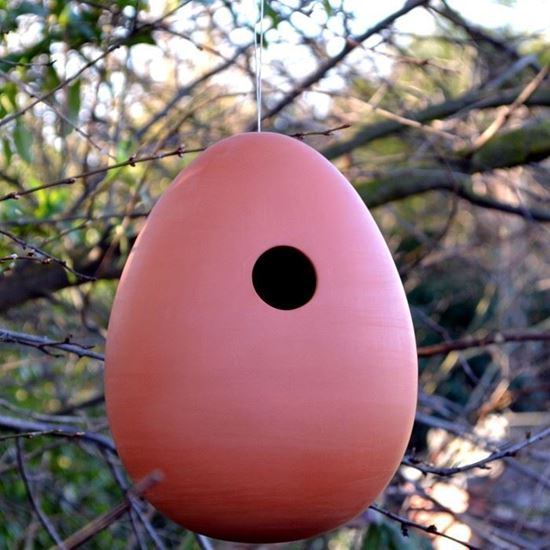 Picture of Egg Hanging Bird Nester