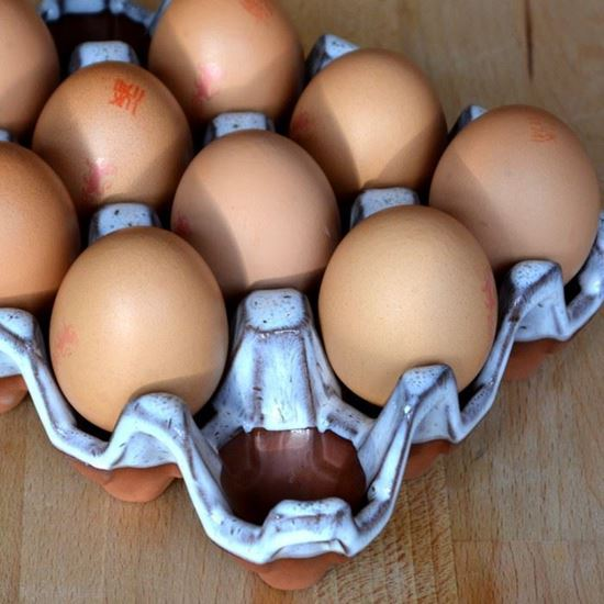 Picture of Egg Holder (12) Oyster Glazed