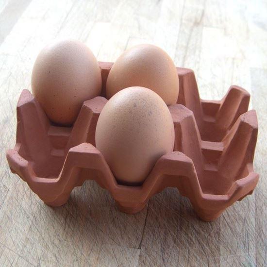 Picture of  Egg Rack (6) Terracotta