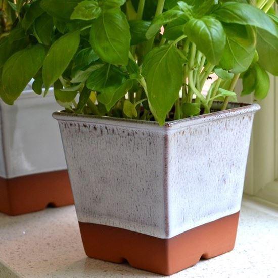 Windowsill Herb Pot Oyster Weston Mill Pottery Uk