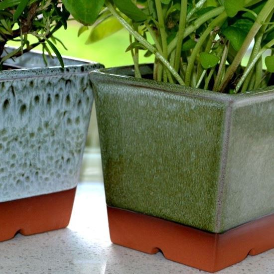 Picture of Windowsill Herb Pot - Apple Green
