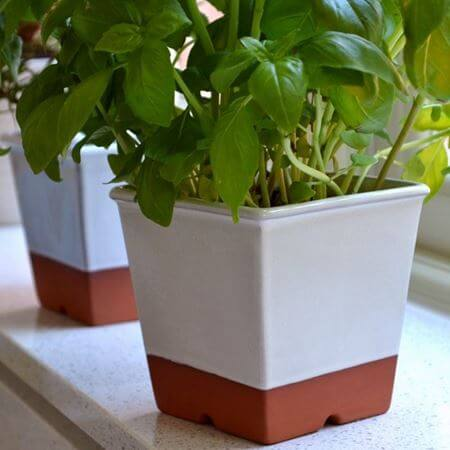 Picture for category Herb Pots