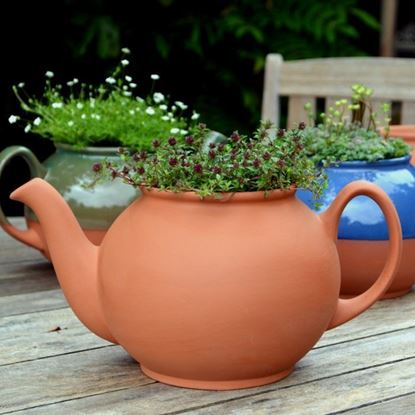 Picture of Teapot Planter | Terracotta | Large