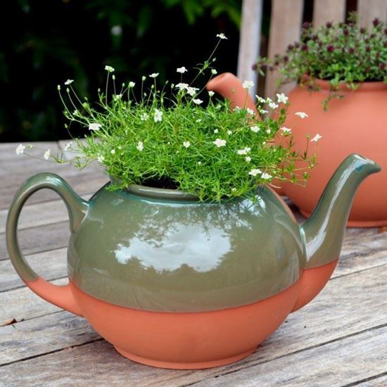 Teapot Planter Large Green Weston Mill Pottery Uk