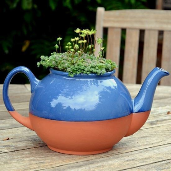 Picture of Teapot Planter Large - Blue