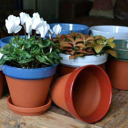 Picture for category Glazed Flower Pots