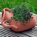 Picture of Amphora Planter Pot