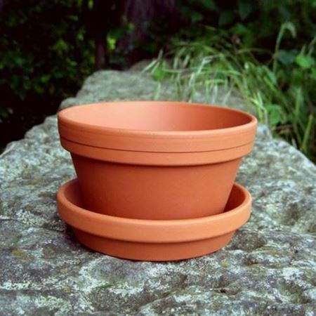 Picture for category Half Plant Pots