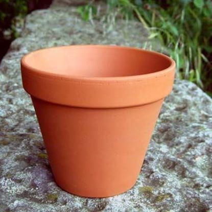 Picture of Terracotta Plant Pot - F20 (20cm dia)