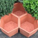 Picture of Terracotta Herb Pots / Herb Wheel (set of 3 pots)