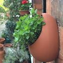 Picture of Egg Wall Pot - Small