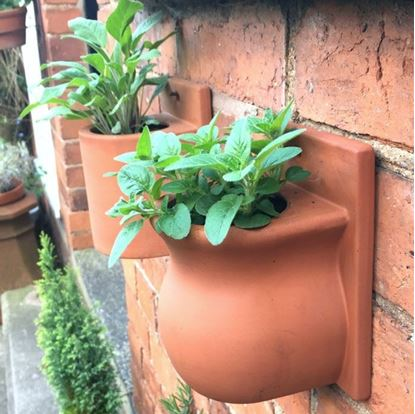 Picture of Small Herb Wall Pots - Urn
