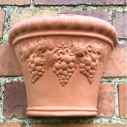 Picture of Grape Wall Pot