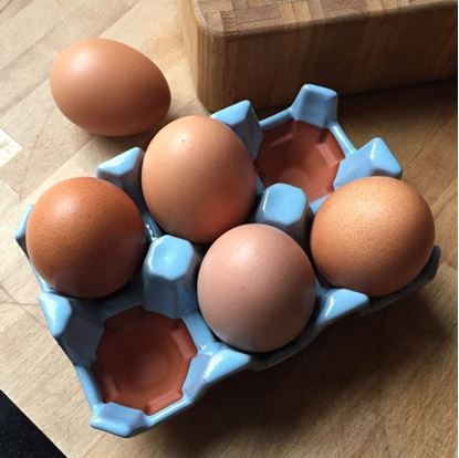 Picture of Egg Rack (6) Pale Blue Glazed