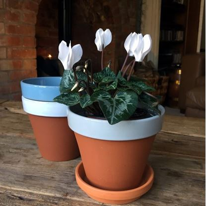 Picture of Terracotta Flower Pot & Saucer - 13cm - Pale Grey Glazed