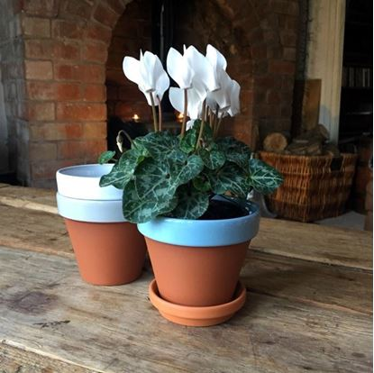 Picture of Terracotta Flower Pot & Saucer - 11cm - Pale Blue Glazed