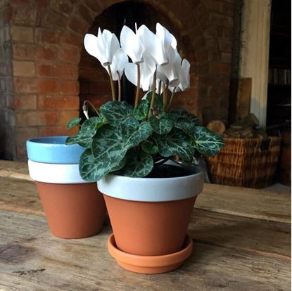 Picture of Terracotta Flower Pot & Saucer - 11cm - Pale Grey Glazed