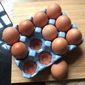 Picture of Egg Rack (12) Pale Blue Glazed