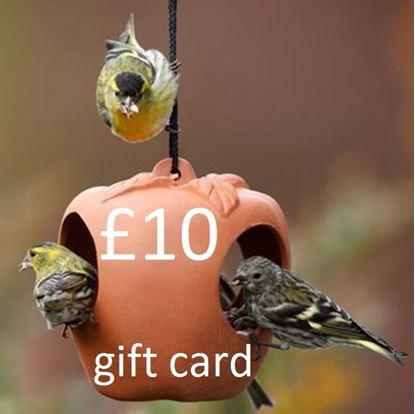 Picture of £ 10 Virtual wmpot Gift Card