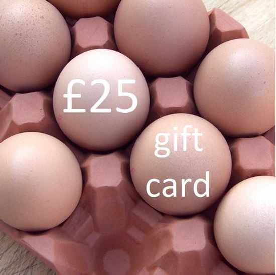 Picture of £ 25 Virtual wmpot Gift Card