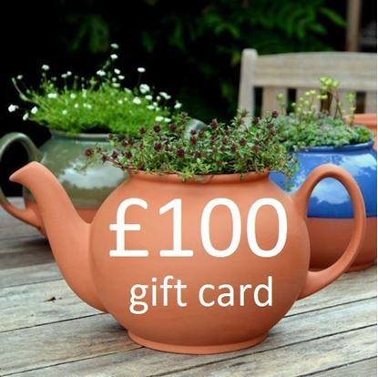 Picture of £100 Virtual wmpot Gift Card
