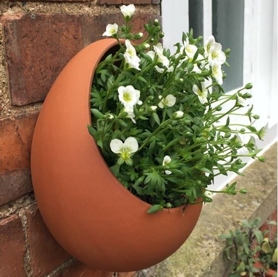 Picture of Egg Wall Pot - Large